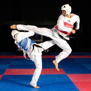 Taekwondo   Google